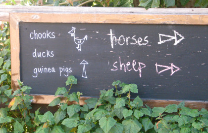 Collingwood Children's Farm Logo and Images