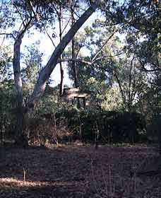 Ghost House Walk Trail, Yanchep National Park Logo and Images