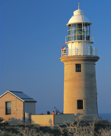 Vlamingh Head Lighthouse Logo and Images