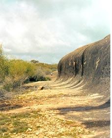 Totadgin Dam Reserve
