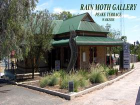 Rain Moth Gallery Logo and Images