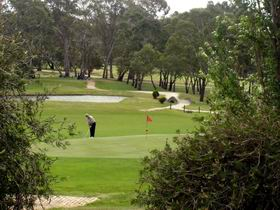 Mount Barker-Hahndorf Golf Club Logo and Images