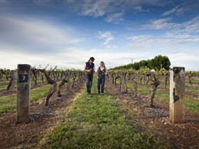 Coonawarra Wineries Walking Trail Logo and Images