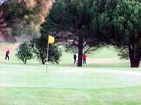 Meningie Lake Albert Golf Club Logo and Images