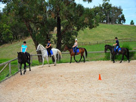 Megan Jones Riding School and Trail Rides Image