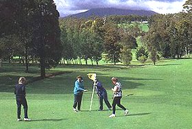 Deloraine Golf Course Logo and Images