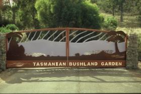 Tasmanian Bushland Garden Logo and Images