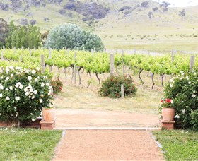 Brindabella Hills Winery Logo and Images