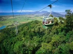 Skyrail Rainforest Cableway Logo and Images