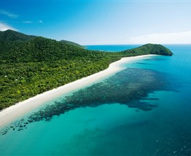Cape Tribulation, Daintree National Park Logo and Images