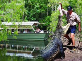 Hartleys Crocodile Adventures Logo and Images
