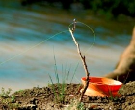 Charleville - Mangalore Warrego River Fishing Spot Logo and Images