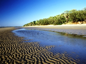 Burrum Coast National Park Logo and Images