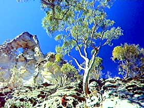 Mount Moffatt Section - Carnarvon National Park Logo and Images
