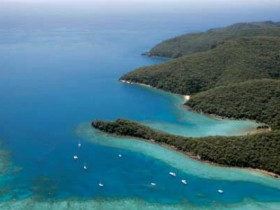 Butterfly Bay - Hook Island Logo and Images