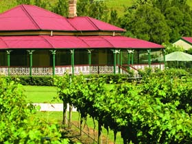 OReillys Canungra Valley Vineyards Logo and Images