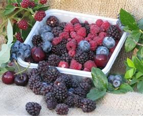 Bright Berry Farms Image
