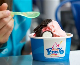 Mix and Go FroYo Logo and Images