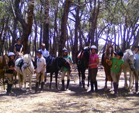 Bellarine Horse Riding Centre Image