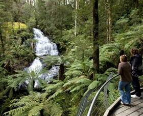 Great Otway National Park Logo and Images