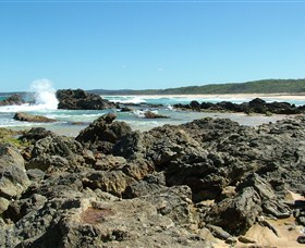 Coastal Walks - Bermagui Logo and Images