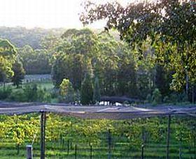 Lyrebird Ridge Organic Winery Logo and Images