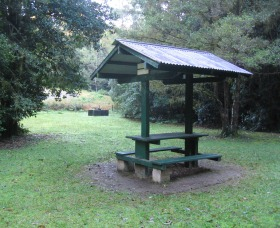 Pine Creek State Forest Image