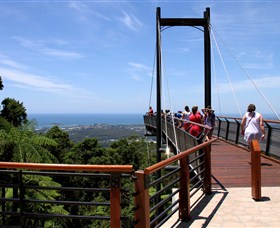 Sealy Lookout Logo and Images