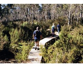Hume and Hovell Walking Track - Henry Angel Trackhead Logo and Images