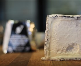 Jannei Artisan Cheese Makers Logo and Images
