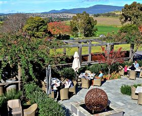 Hollydene Estate Wines and Vines Restaurant Logo and Images