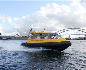 Yellow Water Taxis Image