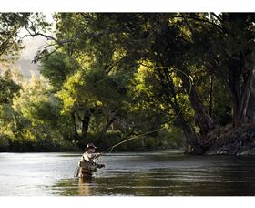 Fly Fishing Tumut Logo and Images