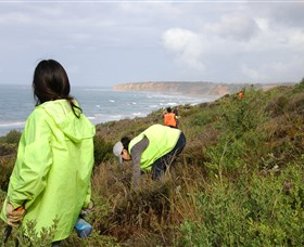Conservation Volunteers Australia - Sydney Logo and Images