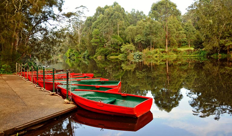 Lane Cove National Park Image