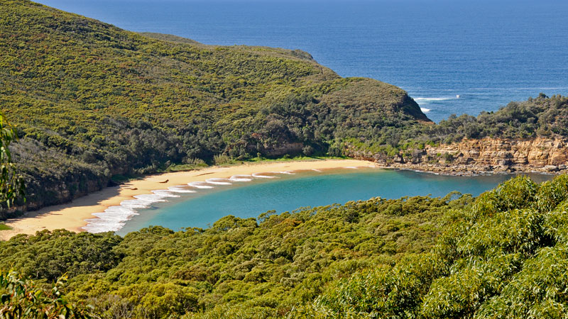 Bouddi National Park Image