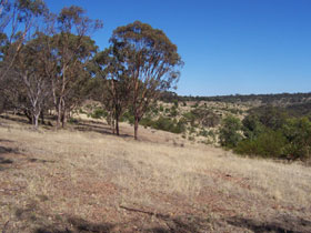 Onkaparinga River National Park Image