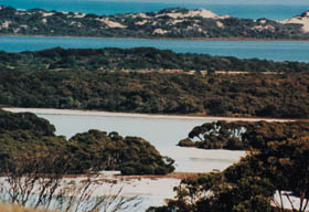 Coorong National Park Logo and Images