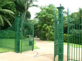 Townsville Palmetum Logo and Images