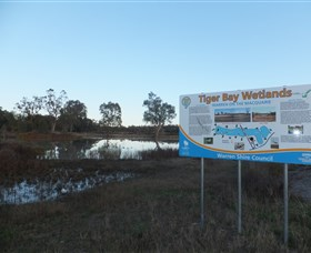 Tiger Bay Wetlands Logo and Images