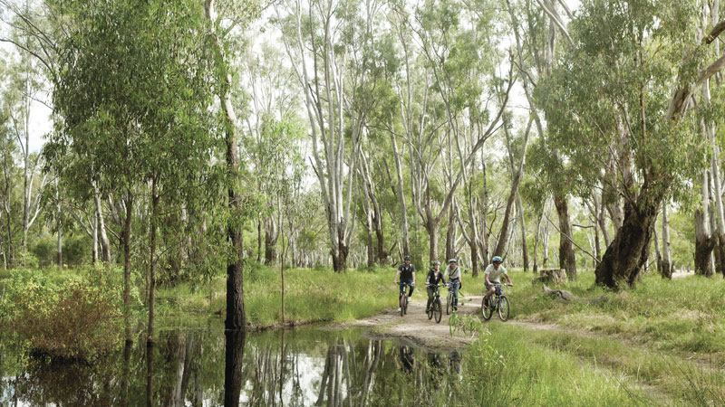 Murray Valley National Park Logo and Images
