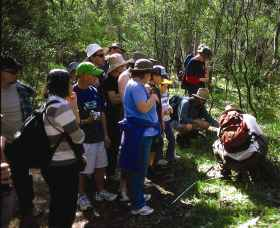 Warrumbungle National Park Discovery Program Logo and Images