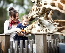 Taronga Western Plains Zoo, Dubbo Image