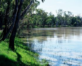 Yarrie Lake Logo and Images
