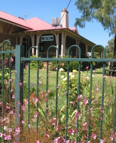 Dunedoo Local Museum Logo and Images