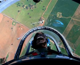 Warbird Aerial Adventures Logo and Images