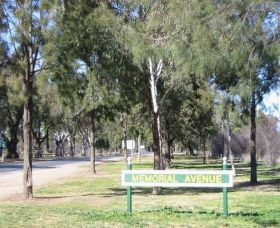 Memorial Avenue in Cowra Logo and Images