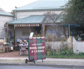 Lady Gails Bookshop and Curios Logo and Images