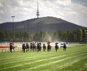 Thoroughbred Park Canberra Racing Club - Horse Racing in the Nations Capital Logo and Images