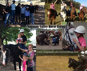 Chapman Valley Horse Riding Logo and Images